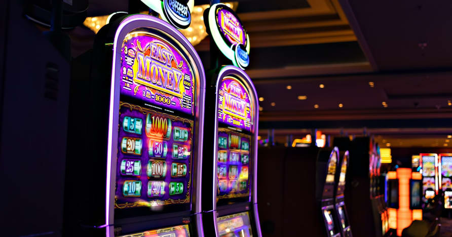 Lo que necesita saber sobre Play'n Go Money Spinning New Slots - Rabbit Hole Riches